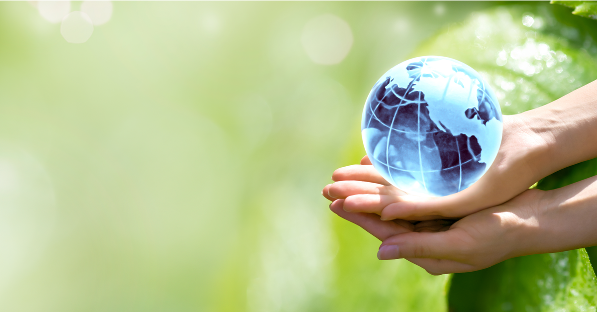 Styrets lovlige handlingsrom ved omstilling til bærekraftig drift